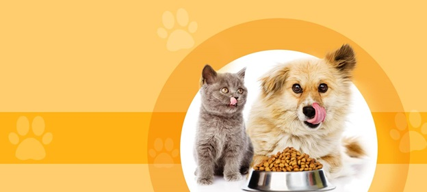 Best Pet Supplies to Ensure a Healthy And Happy Pet